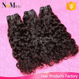 卸し売り人間の毛髪の拡張バージンのビルマの自然な波の毛