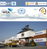 Serviço de transporte profissional do recipiente de Shanghai a Bremerhaven