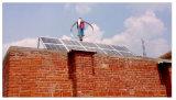 1000W en-Grid Sistema generador de viento para uso doméstico (200W-5KW)