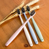 Toothbrush biodegradável Eco-Friendly da palha do trigo