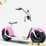 Planche à roulettes électrique de déplacement verte de scooter de cocos électriques de ville