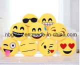 Het Kussen van de Uitdrukking van Emoji