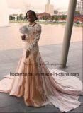 L'abito di promenade di Champagne veste il vestito da cerimonia nuziale reale arabo della Doubai dei manicotti lunghi W2014