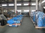 Pompes spécialisées de piston rotatoire de fabrication