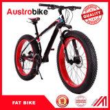 Bicyclette de vente chaude de vélo de montagne de pneu de modèle neuf grosse, pneu de vélo de vélo de neige de 26 pouces gros, gros bâti de carbone de vélo de gros pneu