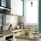 Style WhiteおよびSky現代Blue PVC Kitchen Cabinets