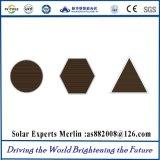 Poli comitato solare da MERLIN