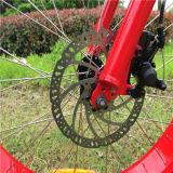 26 bici elettrica grassa della gomma MTB della rotella di pollice per la donna
