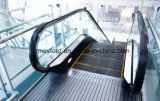 Vvvf Steuerrolltreppe mit unbehaartem Edelstahl