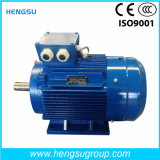 Ye3 75kw-6p Dreiphasen-Wechselstrom-asynchrone Kurzschlussinduktions-Elektromotor für Wasser-Pumpe, Luftverdichter
