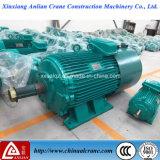 motore a corrente alternata Di 600r/Min Yzr Elelctric da vendere