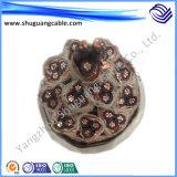 XLPE/PVC/PE/Insulation/Sheath/Armor/Instrument de Kabel van de Computer