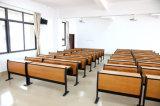 أثاث لازم كلاسيكيّة بينيّة عاديّة ينتظر مقادة مشروع طالب مكتب