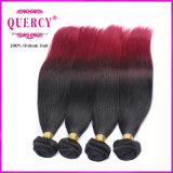 8A Top Quality Virgin Straight brasilianisches Malaysian Peruvian Hair Wholesale Hair Weave Two Tone Color Ombre Hair
