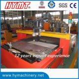 CNCTG-1250X2500 CNCの精密打抜き機血しょうおよびフレーム切断