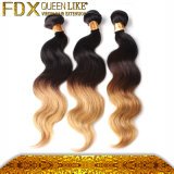 Des Ton-zwei Jungfrau-Brasilianer-Haar Farben-Rotation-/Deep-Wellen-/Straight-Cheape