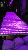 24*10W屋外LED IP65はLEDの壁の洗濯機ライトを防水する