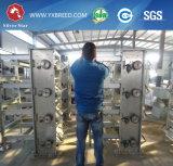 Оборудование птицеферм над 20 летами клетки слоя ячеистой сети линияа жизни гальванизированной стальной