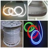 Luz de neón colorida del LED para la decoración al aire libre