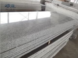 Светлая Polished серая плитка гранита строительного материала гранита G603