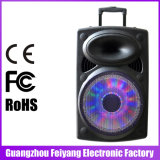 Altoparlante senza fili forte potente di Feiyang/Temeisheng Bluetooth con il carrello--6827D