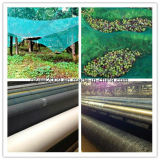 HDPE gestricktes beständiges landwirtschaftliches olivgrünes Ansammlungs-Ernte-UVnetz