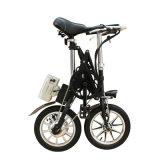 강철 프레임 Foldable 자전거 소형 E 자전거 Yztd-14