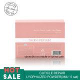 El polvo liofilizado reparación de la cutícula mejora la piel de Couperose releva rojez de la piel hace piel la feria lisa sin rojez