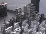 Bomba de escorvamento automático do aço inoxidável (SCP)