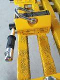 Prezzo di sollevamento permanente del magnete di NdFeB del magnete dell'elevatore dei magneti permanenti di /Lifting