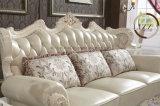 [إيوروبن] رفاهيّة أسلوب منزل جلد أريكة أثاث لازم