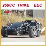 Motorized Drift Trike en venta