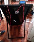 12/24V surgelatore alimentato solare di dc 100%