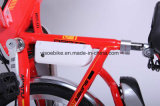26 pulgadas de bicicletas Electric City con Ocultos de la batería en el bastidor