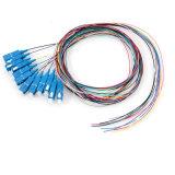 Multicœur 24 Noyau fibre optique intérieure Câble Distributioned