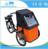 Bicis eléctricas del cargo del triciclo popular del surtidor de la fábrica