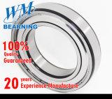 Rolamento de esferas profundo do sulco do tipo de W&M único