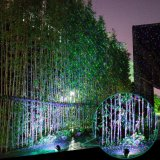 Stern-Erscheinen-Garten-Laserlicht