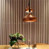 喫茶店の照明のための2017の現代銅アルミニウムペンダント灯