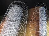 Compensation hexagonale de frontière de sécurité de fil de poulet de Sailin