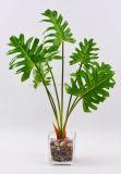 Piante verdi chiare delle decorazioni artificiali con conservato in vaso di vetro