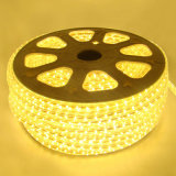 Vendita calda! ! Strisce impermeabili dell'indicatore luminoso da 12/24 di volt LED
