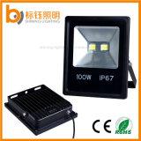 Lâmpada impermeável ao ar livre do projetor do diodo emissor de luz do projector do poder superior da luz 100W da paisagem do diodo emissor de luz da iluminação AC85-265V do jardim IP67