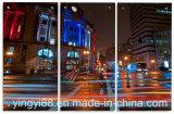De AcrylFabriek van uitstekende kwaliteit van Shenzhen van de Kunst van de Muur