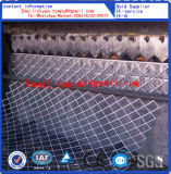 Engranzamento expandido do metal (venda direta da fábrica)