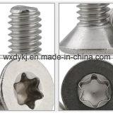 Vorsprung-Kontaktbuchse-flache Hauptschrauben-Befestigungsteil-Fabrik des Edelstahl-Befestigungsteil-sechs von China ISO 14581