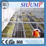 o vidro 150ml engarrafou a linha de processamento da concentração do atolamento da fruta