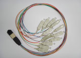 Núcleo de fibra óptica 24 LC / UPC Sm LSZH Elite MPO Patchcord