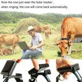 Sos를 가진 태양 GPS 추적자 RF-V26 가축과 양 애완 동물 로케이터는/경보를 반대로 제거한다