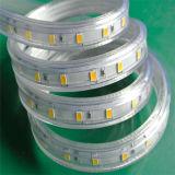 5730 indicatore luminoso di striscia bianco di 230V 120V Dimmable per esterno